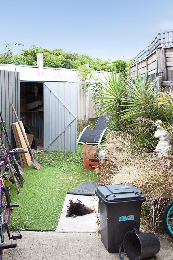 Backyard tidy up